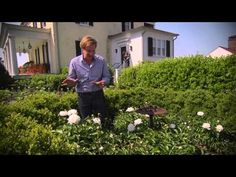 Peonies and Memories | At Home With P. Allen Smith