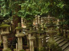 https://flic.kr/p/4NqqTZ | Faroles del Santuadio Kasuga | The Kasuga Shrine (Japanese: 春日大社, Kasuga-taisha) is a Shinto shrine in the city of Nara, Nara Prefecture, Japan