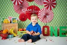 The hungry caterpillar | cake smash | photo | theme | boy | apple | first birthday | messy | fun | child | photographer | photo shoot | idea | party | one | nj photographer