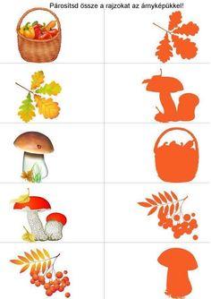 Autumn Activities For Kids, Toddler Learning Activities, Montessori Activities, Preschool Worksheets, Preschool Crafts, Preschool Activities, Easy Toddler Crafts, Autumn Crafts, Autumn Theme