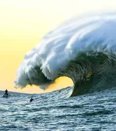 Looks like Todos Santos. Not a rogue wave; deep ocean rogue waves can't be surfed because they can't be predicted.