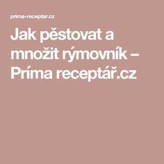 Jak pěstovat a množit rýmovník – Príma receptář.cz Pesto, Health, Fitness, Health Care, Salud