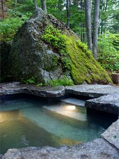 signed by tina: Wishing for my own natural Pool