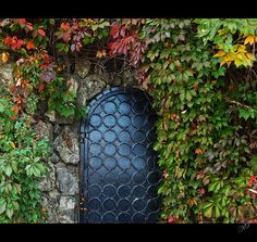 A man who has maybe tired of the world lives behind this door. He takes great joy in watching the colours changes in the leaves, the flowers bloom and the seasons pass by his door. He is content to stay inside with his library and dreams