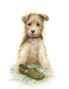 Belles illustrations de chiens. giordano