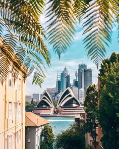 8 of the most amazing places to stay and relax in Sydney, Australia including hotels with amazing views of the Opera House and the Harbour bridge Australian Photography, Sydney Restaurants, Villa, Sydney City, Waterfront Restaurant, Destinations, Harbor View, Sydney Australia, Best Cities