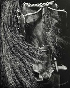friesian horses with braids | Friesian Carriage Horse - FINISHED - Page 2 - WetCanvas