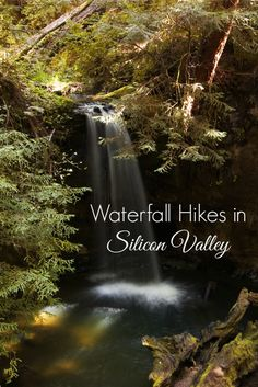 Where to see waterfalls in the San Francisco Bay Area: Check out these local Silicon Valley and Santa Cruz Mountain hiking trails that go to stunning waterfalls that are only visible in the winter months!