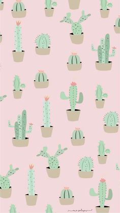 Another cute cactus wallpaper for iPhone or computer! Ipad Background, Iphone Background Wallpaper, Aesthetic Iphone Wallpaper, Screen Wallpaper, Aesthetic Wallpapers, Wallpaper Lockscreen, Background Pictures, Cactus Backgrounds, Tumblr Backgrounds
