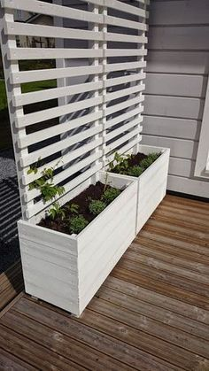 Privacy in the garden, garden, privacy on the terrace, planter for … patio landscaping – backyard patio designs Privacy Planter, Garden Privacy, Backyard Privacy, Garden Trellis, Backyard Patio, Backyard Landscaping, Patio Stone, Patio Plants, Flagstone Patio