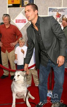 """2/12/06 Paul Walker at the premiere of """"Eight Below"""". (Los Angeles, CA)"""