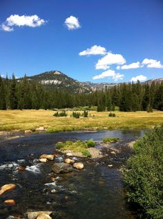 Reds Meadows, Ansel Adams Wilderness, Mammoth Lakes, Madera, California, near Devil's Postpile National Monument and Rainbow Falls.