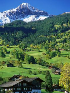 Grindewald, Switzerland. I think you will be my choice of city to visit this year.