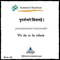 Sanskrit Tattoo, Sanskrit Quotes, Sanskrit Mantra, Sanskrit Words, Hamsa Tattoo, Spiritual Words, Spiritual Thoughts, Spiritual Awakening, Sanskrit Language