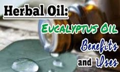 wasteland survival and preparedness | EucalyptusOil.com lists some of the common types of eucalyptus oil:1