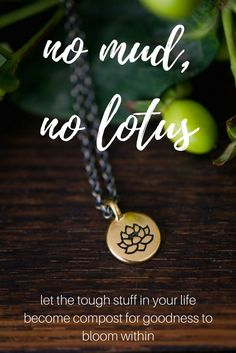no mud, no lotus.
