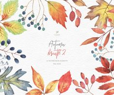 Watercolor Fruit, Watercolor Leaves, Watercolor Cards, Watercolor Background, Watercolor Ideas, Watercolor Artwork, Puppy Clipart, Fall Clip Art, Leaf Clipart