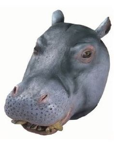 Deluxe DONKEY  NOSE Latex Rubber Costume Mask Zoo Animal Rodent