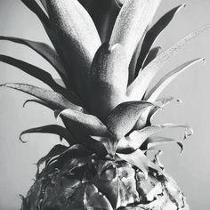 Silver Pineapple by James McKenzie