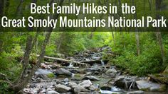 See our list of Best Family Hikes in The Great Smoky Mountains National Park.  All are easy, fairly short, and have cool things your kids will love.