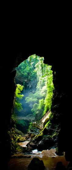 Amaze7: Amazing View of Wonderland