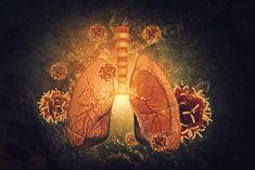Detoxikace plic za pouhé tři dny – nejen pro kuřáky!