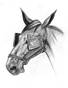 Hasil gambar untuk kacamata kuda