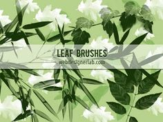 bamboo leaf photoshop brushes