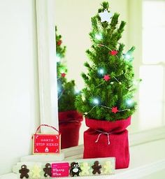 """Children's Christmas Tree Gift. A mini picea spruce is decorated with a star garland and battery-operated LED lights, then presented in a red hessian bag. Ideal for kids, it includes a """"Santa stop"""" sign and merry men chocolates. Picea (500-600mm) Presented in a red hessian bag with """"Santa stop"""" sign, chocolates, 10 LED lights and garland Bag dimensions: H240 x W125 x Diam. 125mm Sent with a card for your personal message Free delivery Order by 6 pm Monday to Friday for next day delivery…"""