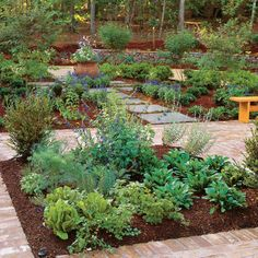 IDEA #5: Spice Up a Kitchen Garden in the FRONT yard by .southernliving.com (Who would complain if every front yard garden looked this fantastic?!)