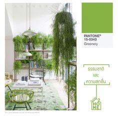 草木綠(15-0343 Greenery)