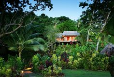 Matangi Private Island Resort in Fiji, our tree house, in paradise, where I walked down the isle to my husband...