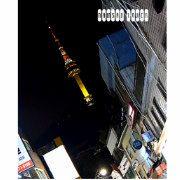 Der Turm N Seoul, offiziell der YTN Seoul Turm und allgemein bekannt als der Namsan Turm oder Seoul-Turm, ist eine Kommunikation und ein Aussichtsturm, die auf Namsan Berg in zentralem Seoul, Südkorea gelegen sind. Bei 236m markiert er den Höhepunkt in Seoul. Seoul, Portugal, Berg, South Korea, Fun, Travel, Mountain, Towers, Pictures