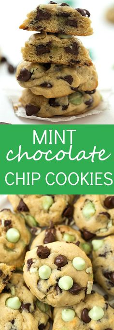 Mint Chocolate Chip Truffles | Mint Chocolate Chips, Mint Chocolate ...