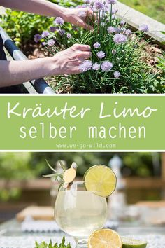 Limonade selber machen: 10 erfrischende Limo Rezepte With this herbal recipe you can make lemonade yourself. The refreshing drink is very healthy. The herbal lemonade is also sugar-free. Healthy Juice Recipes, Healthy Juices, Healthy Eating Tips, Healthy Nutrition, Smoothie Recipes, Kefir Benefits, Tea Benefits, Clean Eating Soup, Kefir Recipes