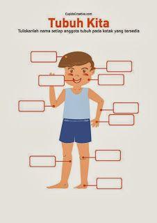 Lembar Belajar Anak Sd Tk Mengenal Dan Membaca Nama Anggota Bagian Badan Tubuh Wajah Manusia