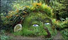 class idea..I have an unused spot in my garden and i have loads of crocosmia bulbs like the ones used for the hair...i just need rubble and soil..and make the face using succulents..rosy ones for the cheeks