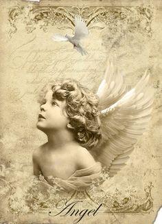 Vintage angel image Digital collage Free to use Decoupage Vintage, Vintage Diy, Vintage Ephemera, Vintage Cards, Vintage Paper, Vintage Postcards, Images Vintage, Vintage Pictures, I Believe In Angels
