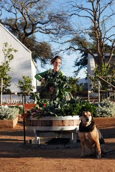 Vegetable washer--Babylonstoren // An Exceptional Country Getaway in South Africa