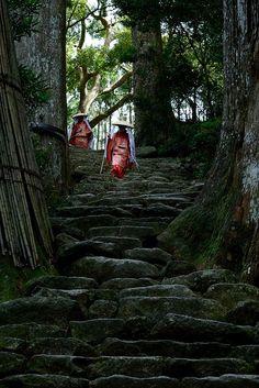 Follow me ~  in Japan /(Source: iseo58, via gardenofthefareast)