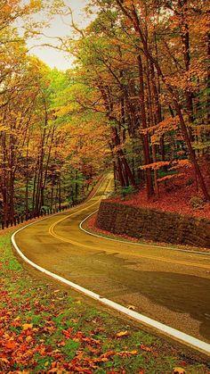 Autumn Pathway - mah noor - Google+