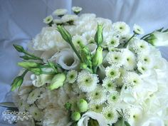 Ramo de novia con hortensias, margaritas, lisianthus y claveles :: White wedding bouquet with hydrangeas, mums, carnatios and lisianthus by arbolande