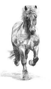 Rien_Poortvliet horses - Google Search
