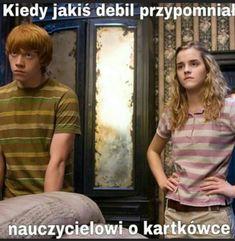 Harry Potter Mems, Harry Potter Facts, Harry Potter Characters, Polish Memes, Harry Draco, Weekend Humor, Funny Mems, School Memes, Tom Felton