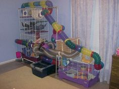 So much room for activities! Hamsters or mice would love this. Rats too if the tubing was big enough! Hamsters, Ferrets Care, Chinchillas, Ferret Toys, Pet Ferret, Pet Rats, Small Animal Cage, My Animal, Habitat Du Hamster