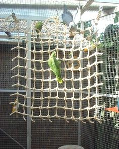 I'm planning on building an aviary for my birds with my tax return this year and I think that this would be a great idea to have this for them. I think they would love it.