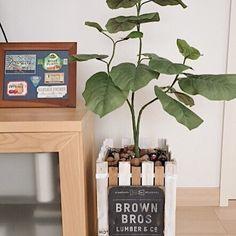 いいね!522件、コメント11件 ― 造花ドットコムさん(@zoukacom)のInstagramアカウント: 「昨日またほかのお客さんから写真をいただきました。 . 鉢を100円ショップのスノコと木製プレートをシャビー風に加工して制作されたとのこと。 .…」