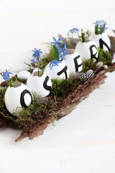 Ostern: Tischdeko-Idee Easter table decoration idea: Easter & handicrafts belong together. This Easter arrangement can be made entirely from natural materials. The Easter decoration is … Easter Table Decorations, Decoration Table, Easter Centerpiece, Easter Decor, Easter Crafts, Ideas Decoracion Cumpleaños, Diy Adornos, Diy Décoration, Window Sill