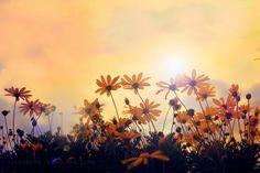 A New Day Rising by FlabnBone.deviantart.com on @deviantART