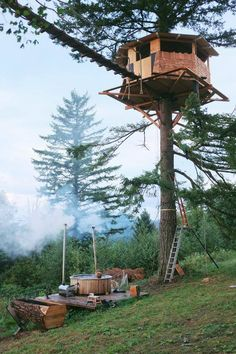 Terrifyingly high Tree House with what appears to be some equally scary walkway.